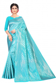 DD 179 ice blue kanjivaram silk saree