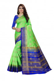 DD3001 Light Green Nylon Dyed Kanchipuram Silk Saree