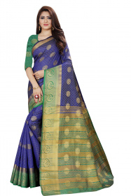 DD3002 Blue Colour Nylon Dyed Kanchipuram Silk Saree